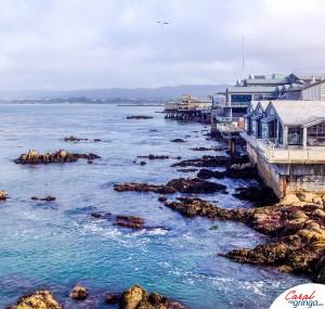Costa de Monterey.