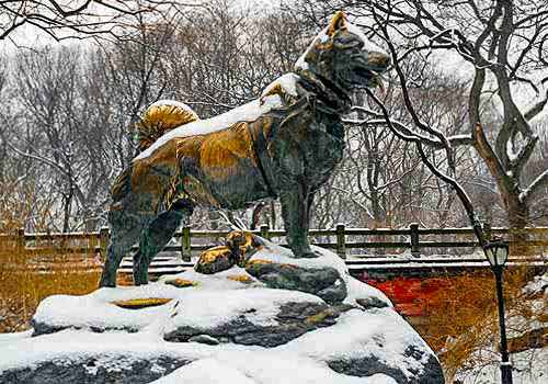 Estátua do cão Balto Fonte: centralparknyc.org