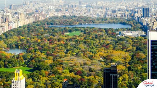 Central Park do alto