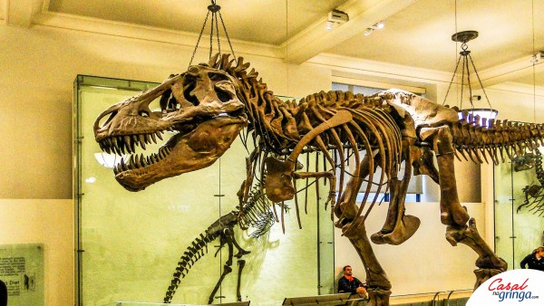 Esqueleto de um T. Rex na área mais concorrida do Museu.