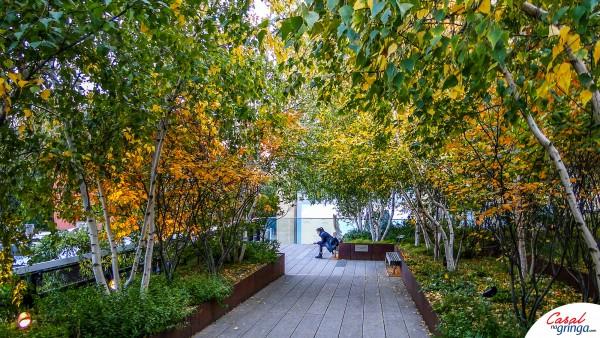 Paz e tranquilidade em meio a cidade grande. Assim é o High Line.