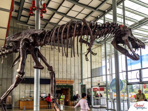 Um enorme esqueleto de T-Rex logo na entrada