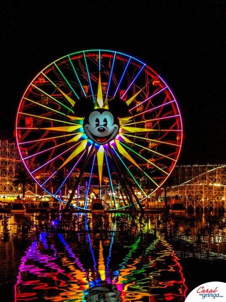 O Parque fica maravilhoso durante a noite
